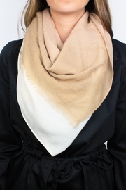 The House of Perna Ombre Scarf - Front cropped