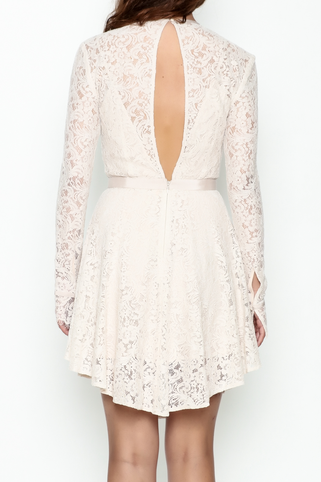 The JetSet Diaries Lace Mini Dress - Back Cropped Image