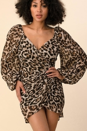 The Sang Leopard Mini Dress - Product Mini Image