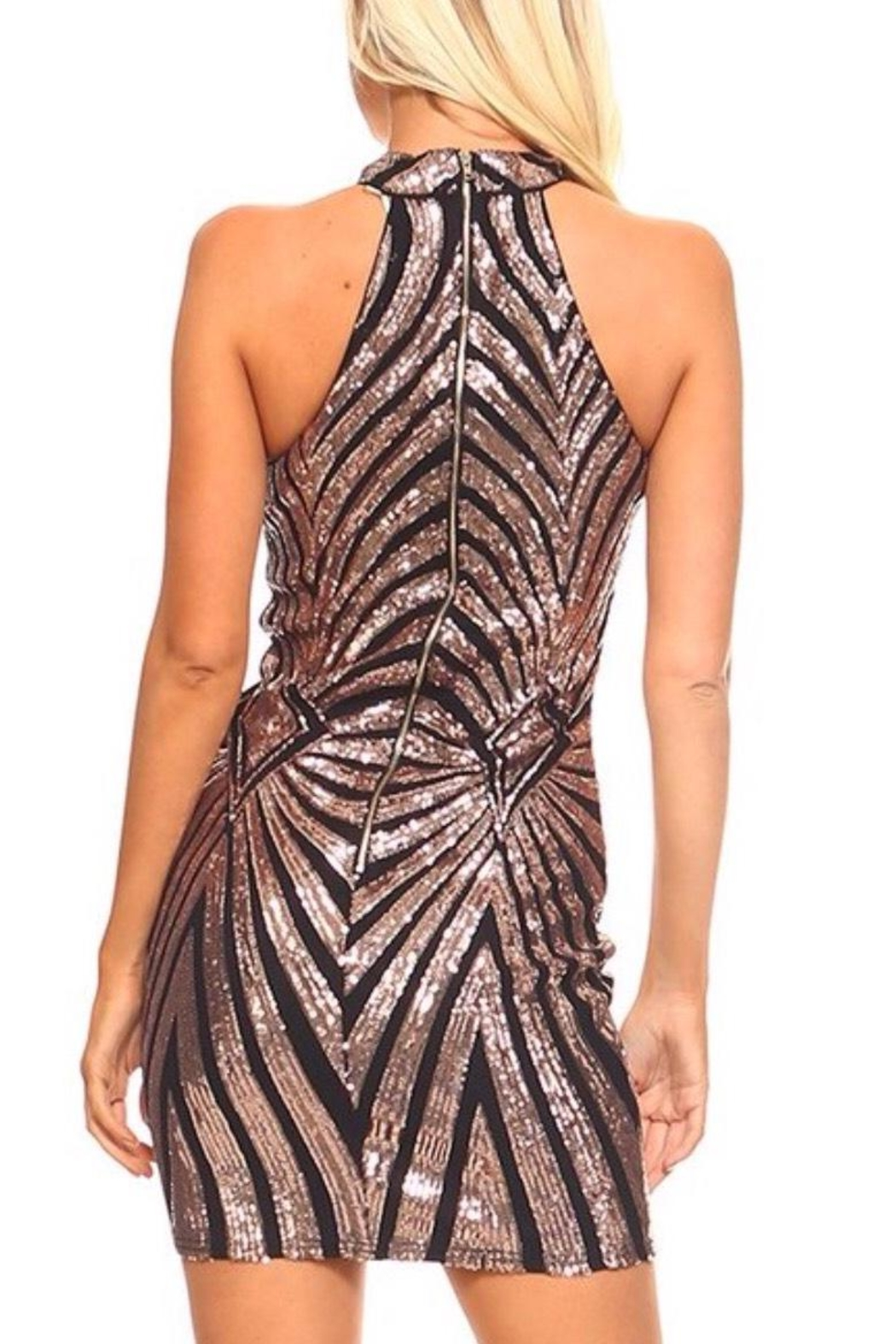 The Sang Sequin  Dress - Front Full Image