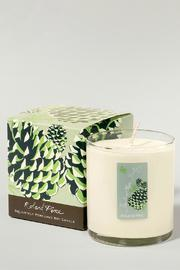 The Soap and Paper Factory Pine Soy Candle - Front cropped