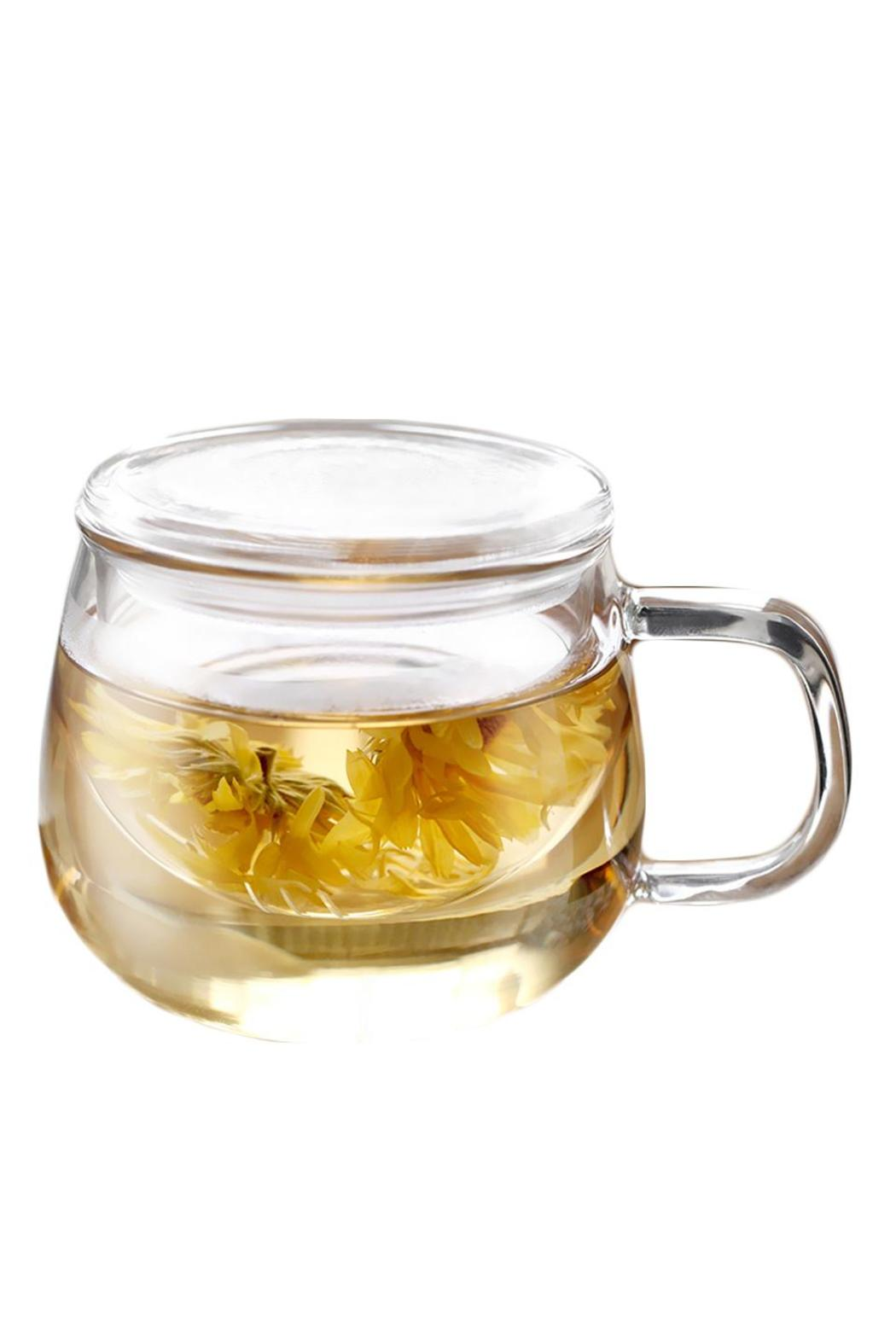 The Tea Farm Glass Tea Cup - Main Image