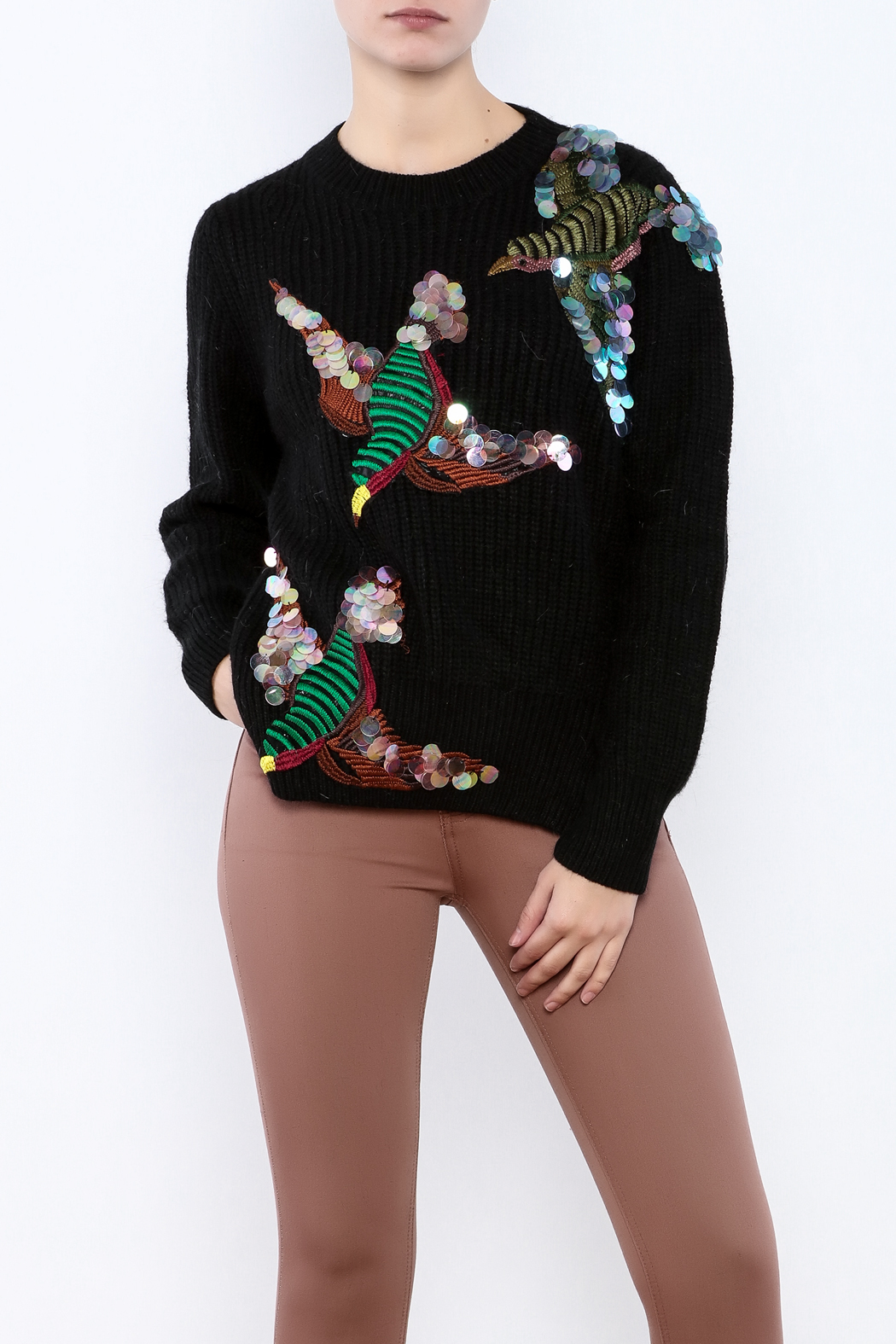 THINK CLOSET Sequined Starling Sweater - Main Image
