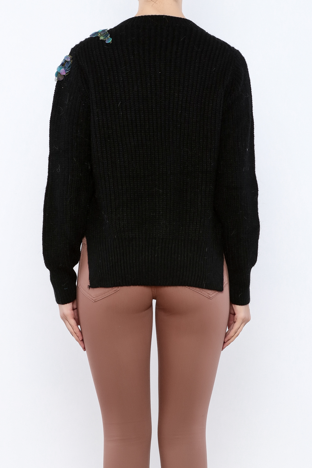 THINK CLOSET Sequined Starling Sweater - Back Cropped Image