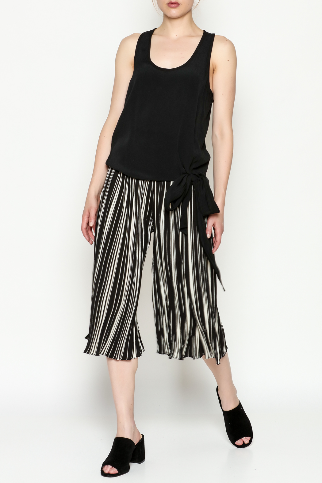 THINK CLOSET Stripe Gaucho Pants - Side Cropped Image