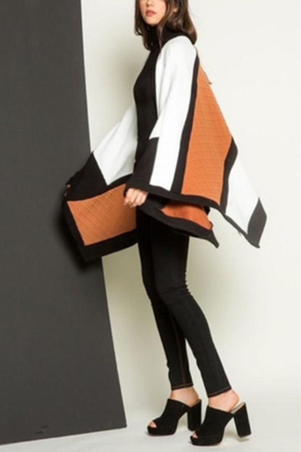 Thml Color Block Cape - Front Full Image