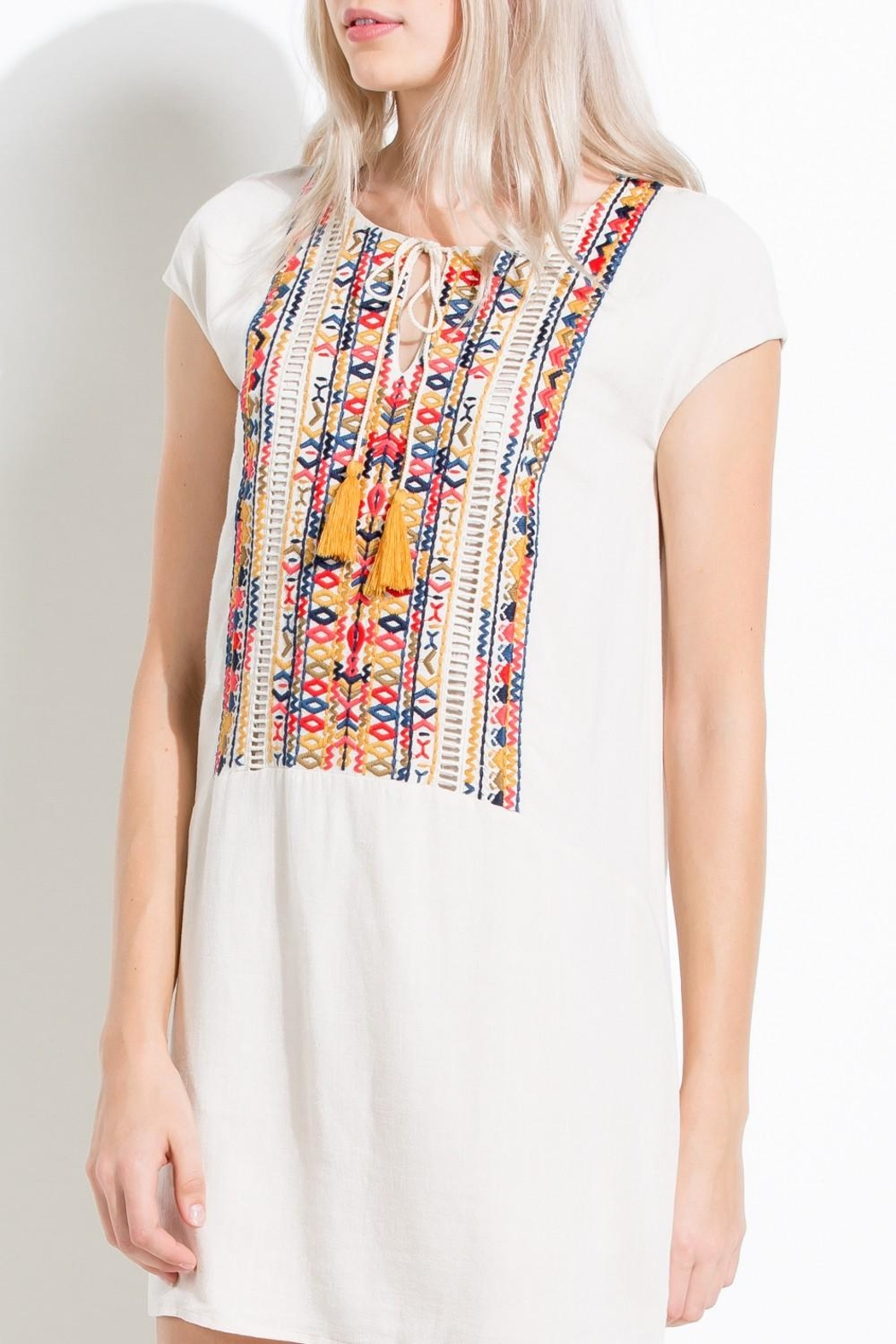 Thml Colorful Embroidered Dress - Side Cropped Image