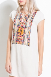 Thml Colorful Embroidered Dress - Side cropped
