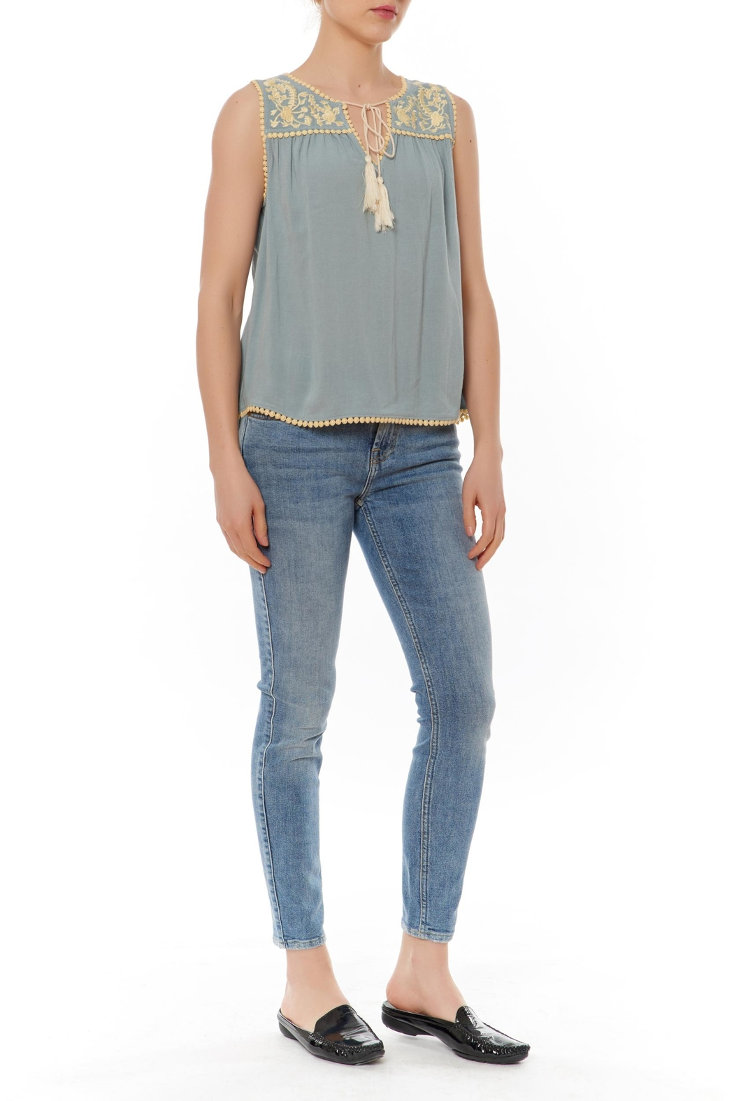 Thml Embellished Yoke Top - Front Cropped Image