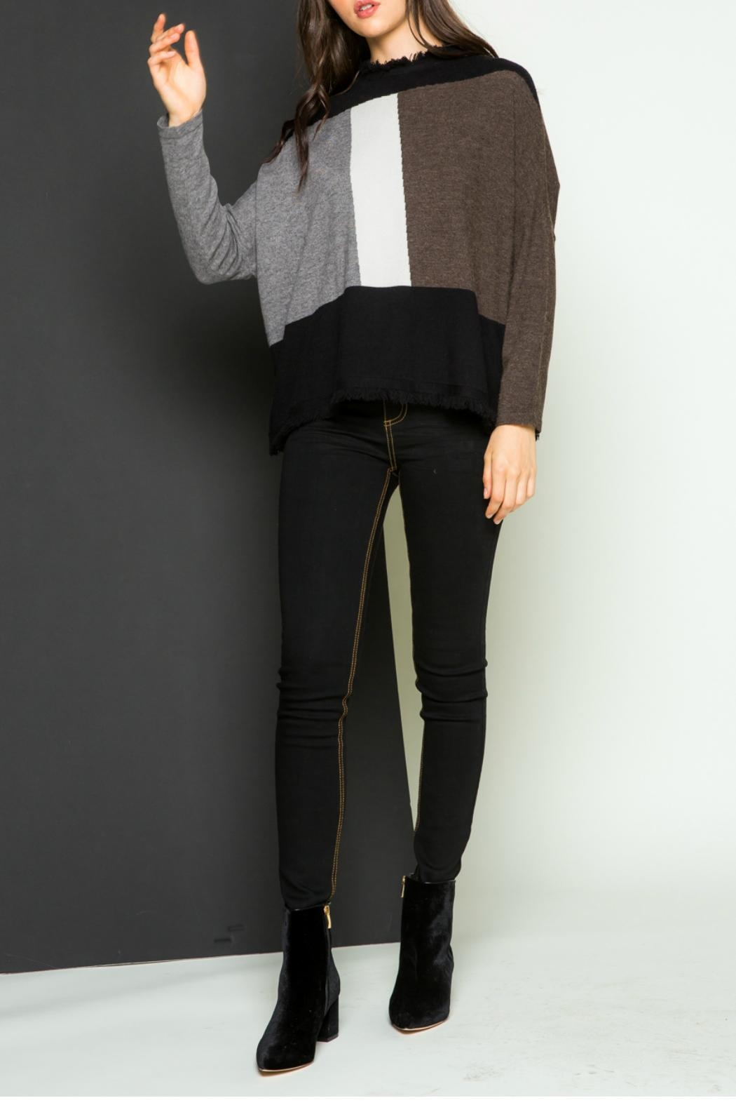 Thml Fringe Pullover Sweater - Main Image