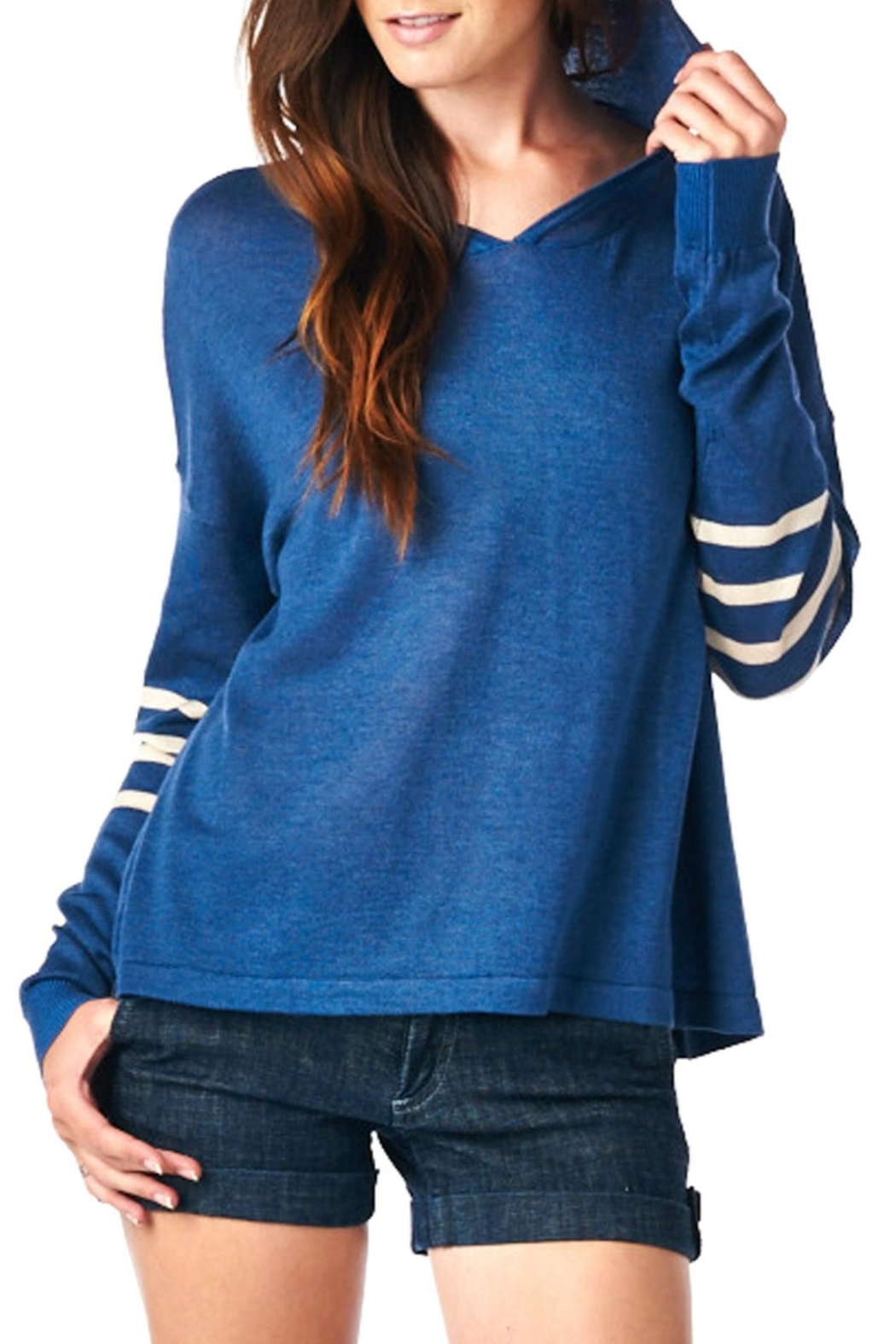 LE SAMPLE Stripe Sweater Hoodie - Front Cropped Image