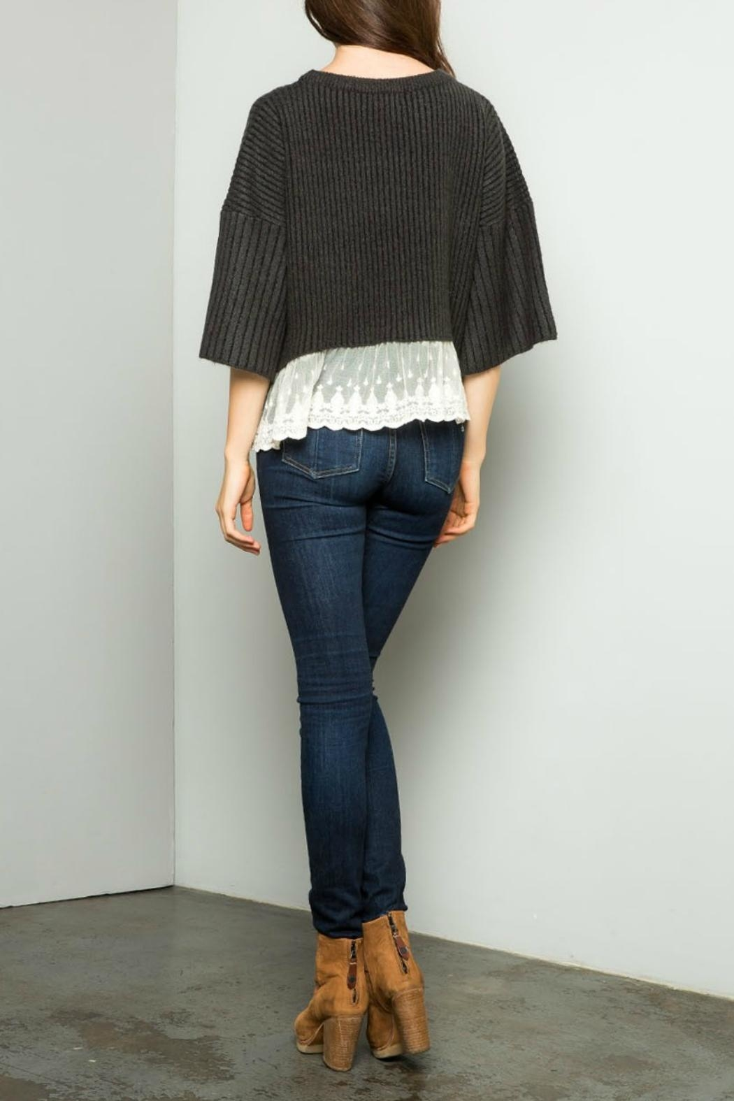 Thml Texured Crop Sweater - Front Full Image