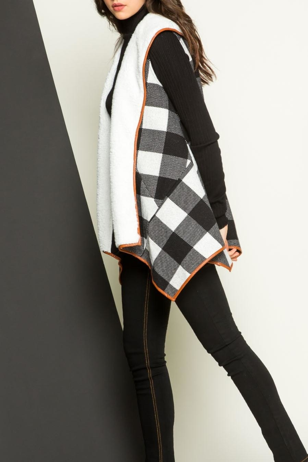 THML Clothing Checkered Shearling Vest - Side Cropped Image