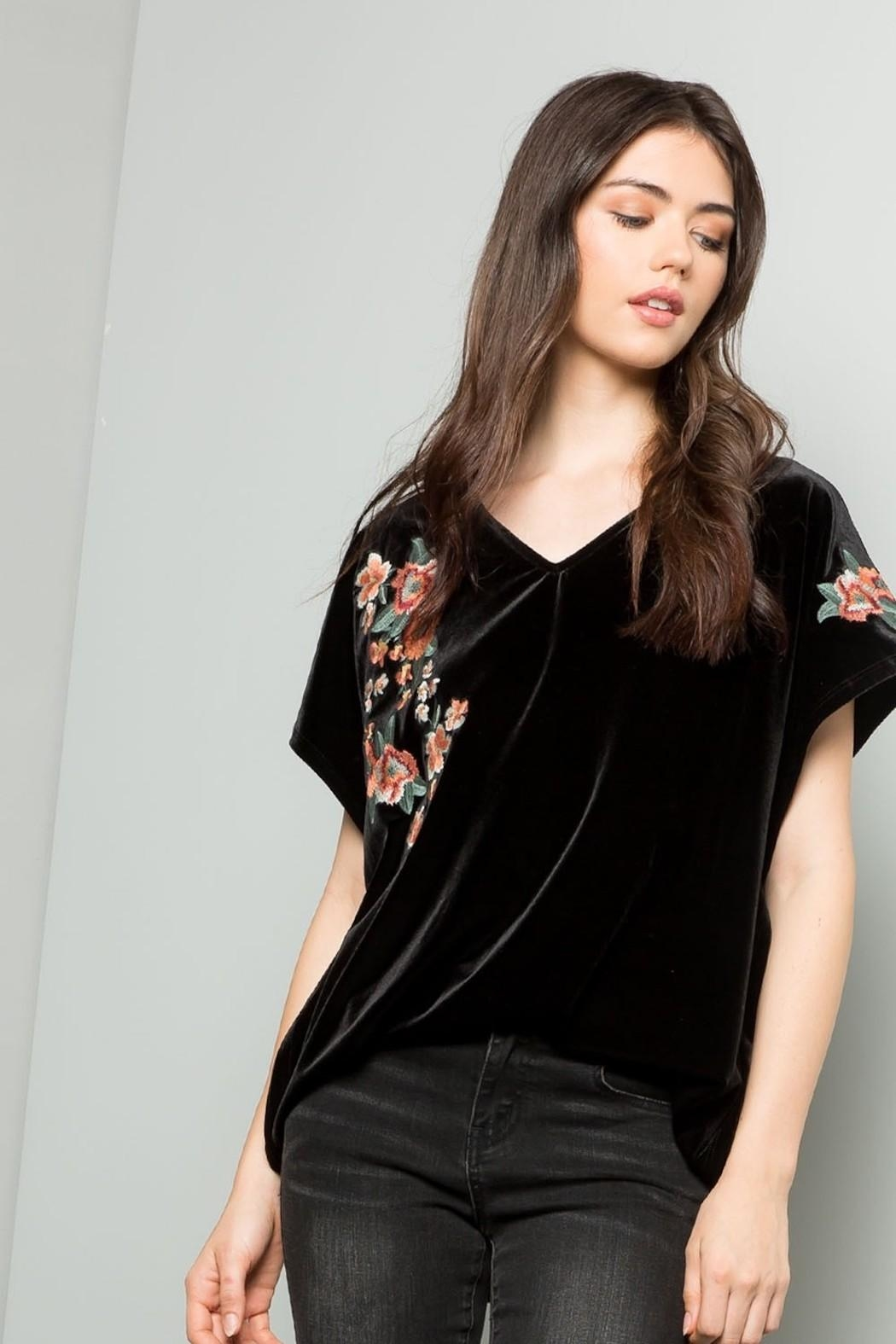 THML Clothing Embroidered Velvet Top - Main Image