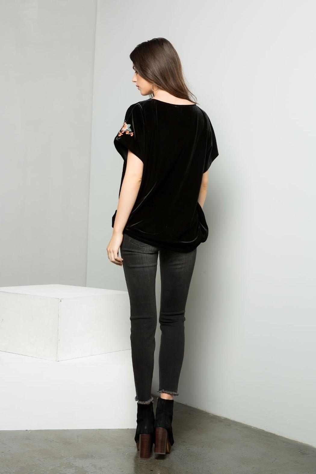 THML Clothing Embroidered Velvet Top - Back Cropped Image