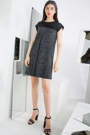 THML Clothing Leopard Knit Shift - Product Mini Image