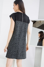 THML Clothing Leopard Knit Shift - Front full body