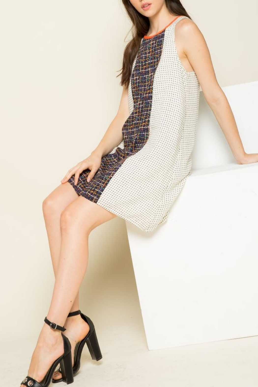 THML Clothing Mixed Print Dress - Back Cropped Image