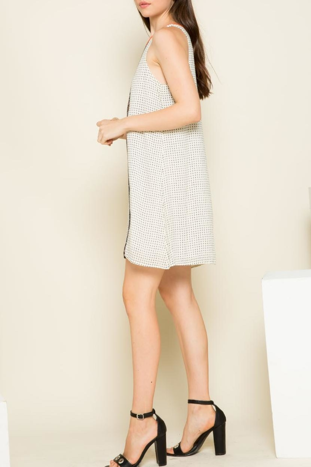 THML Clothing Mixed Print Dress - Front Full Image