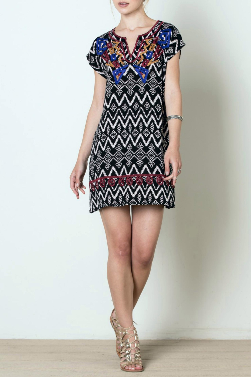 THML Clothing Patterned Tunic Dress - Main Image