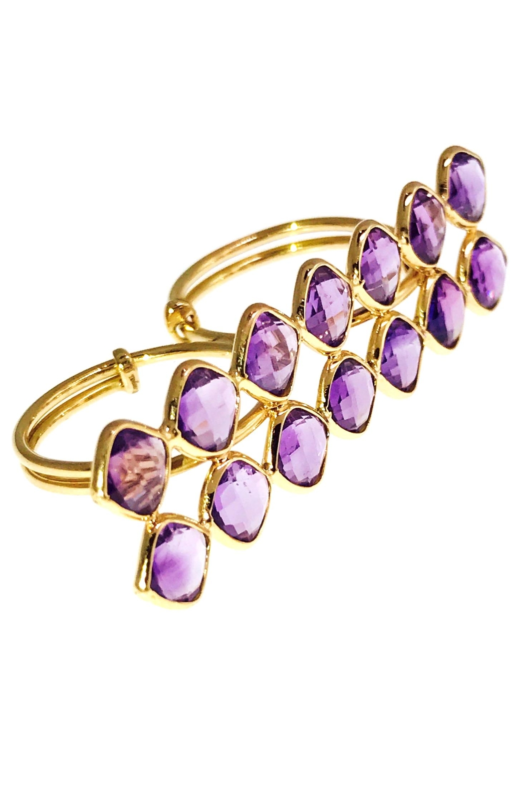 Tiara Fine Jewelry Amethyst Double Ring - Front Cropped Image