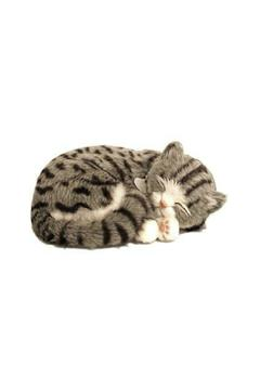 Shoptiques Product: Perfect Petzzz Grey-Tabby