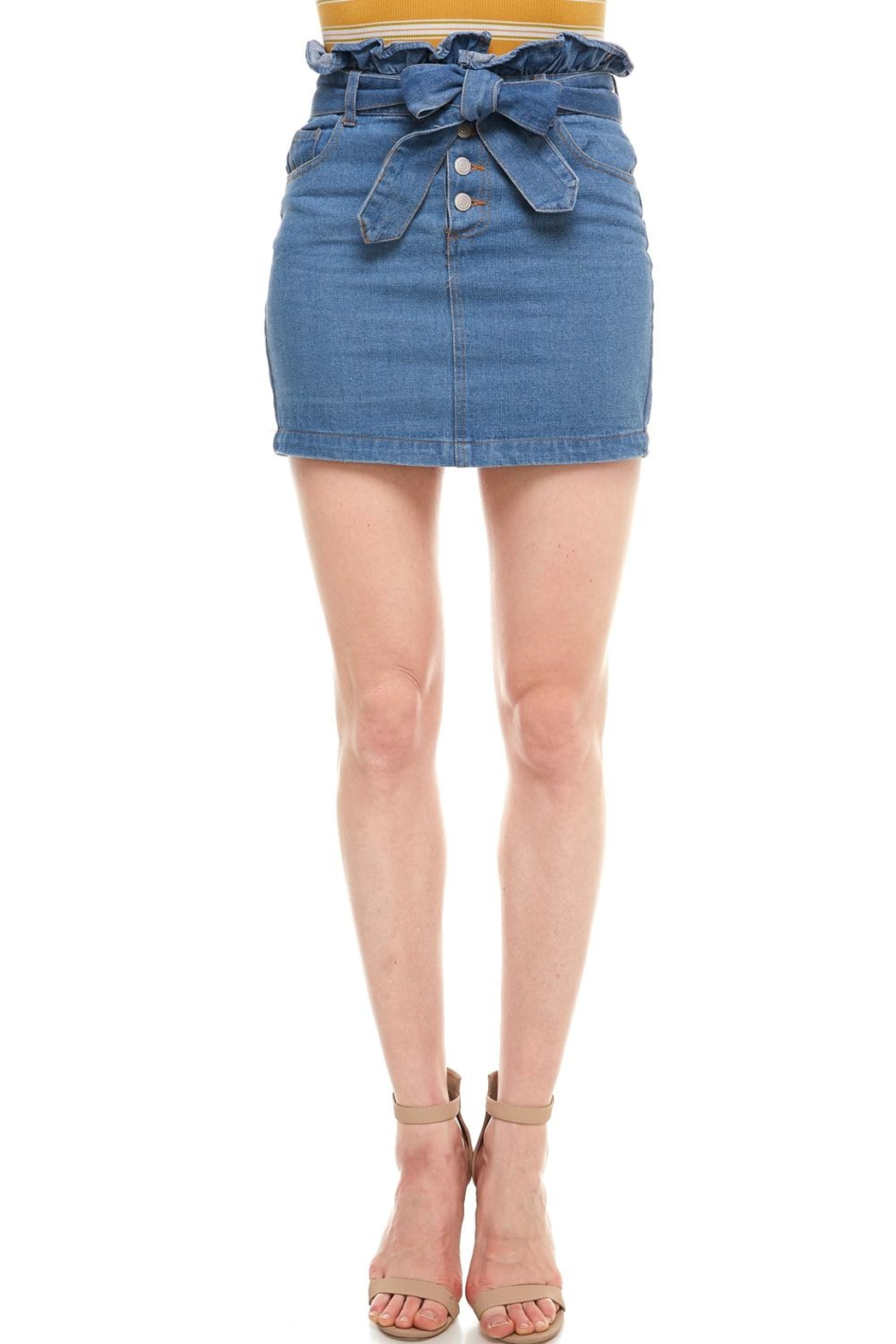 Sans Souci Tie Front Skirt - Front Cropped Image