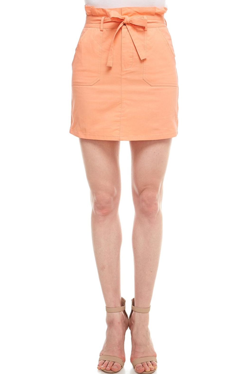 f4c7eea0f8c Sans Souci Tie Mini Skirt from New York by Dor L Dor — Shoptiques