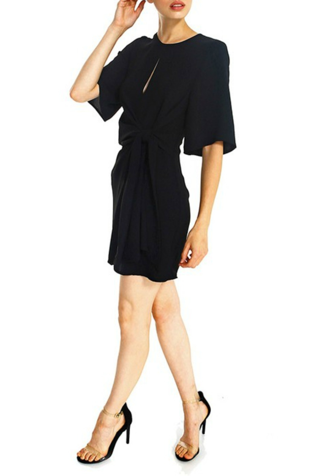 TCEC Tie Waist Shift Dress - Side Cropped Image