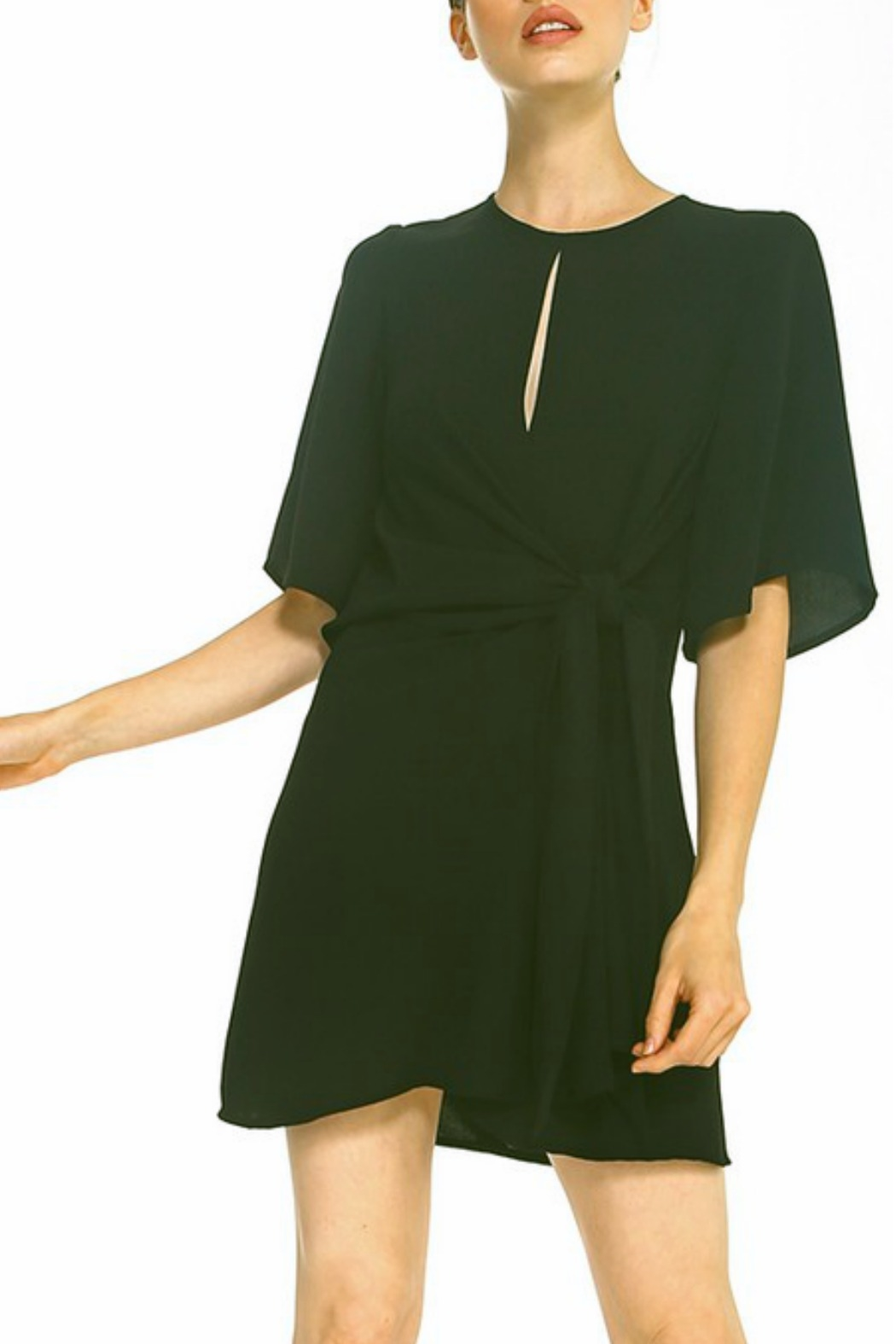 TCEC Tie Waist Shift Dress - Front Cropped Image