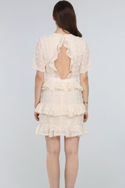 Just Me Tiered Ruffle Mini-Dress - Back cropped