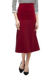 Tierra Tutu Cardinal Wolford Skirt - Front cropped