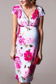 Tiffany Rose Maternity And Nursing Floral Dress - Front cropped