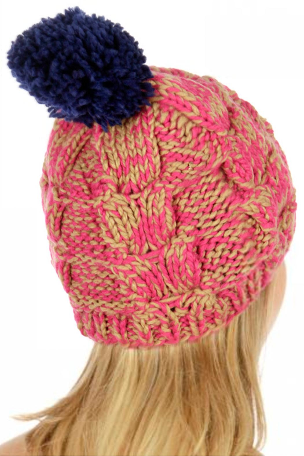 TIGERLILY Multi-Color Pompom Hat - Front Cropped Image