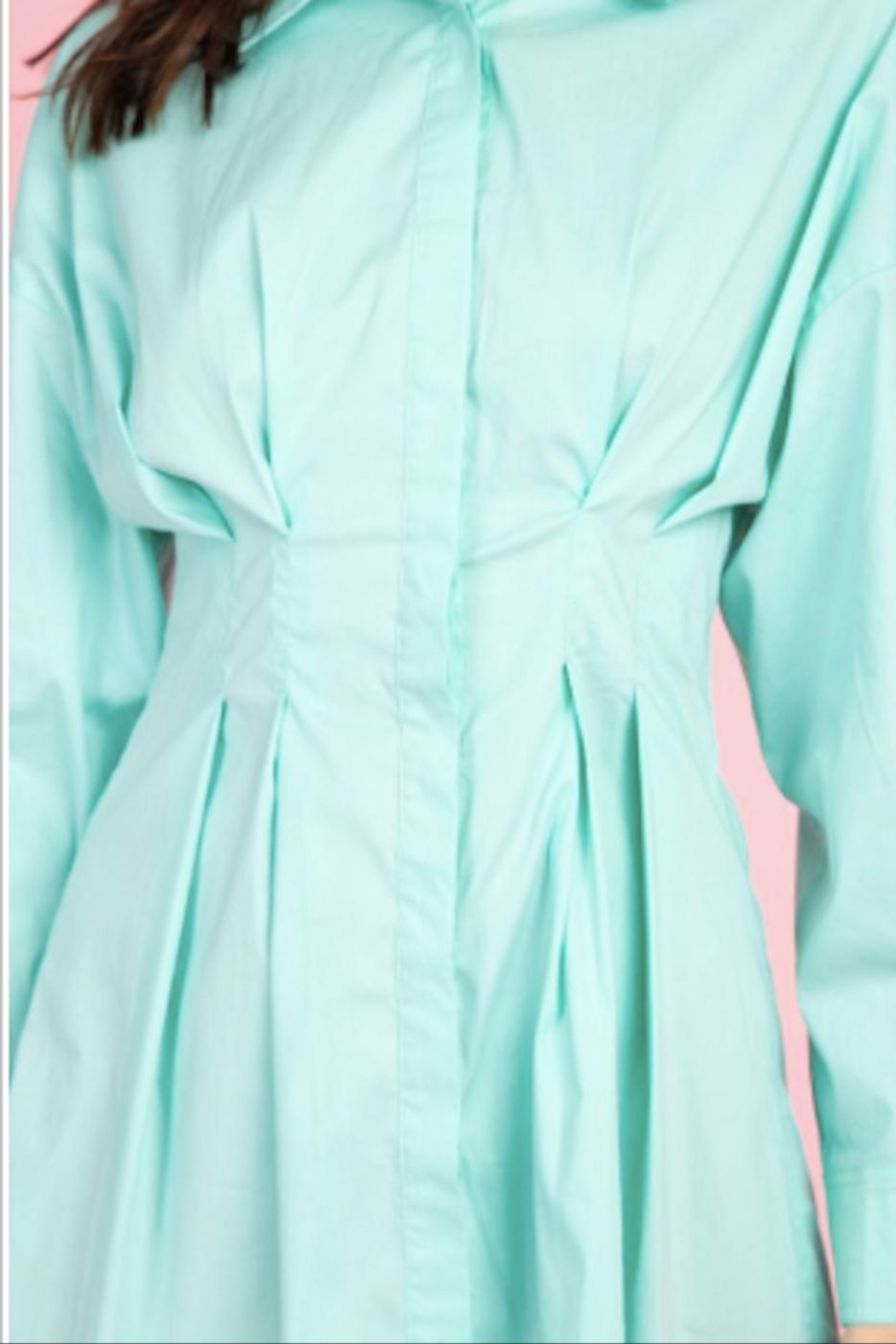 TIMELESS Bahamas Button Down - Back Cropped Image