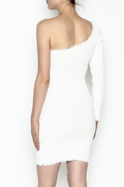 TIMELESS Blanca Bodycon Dress - Back cropped
