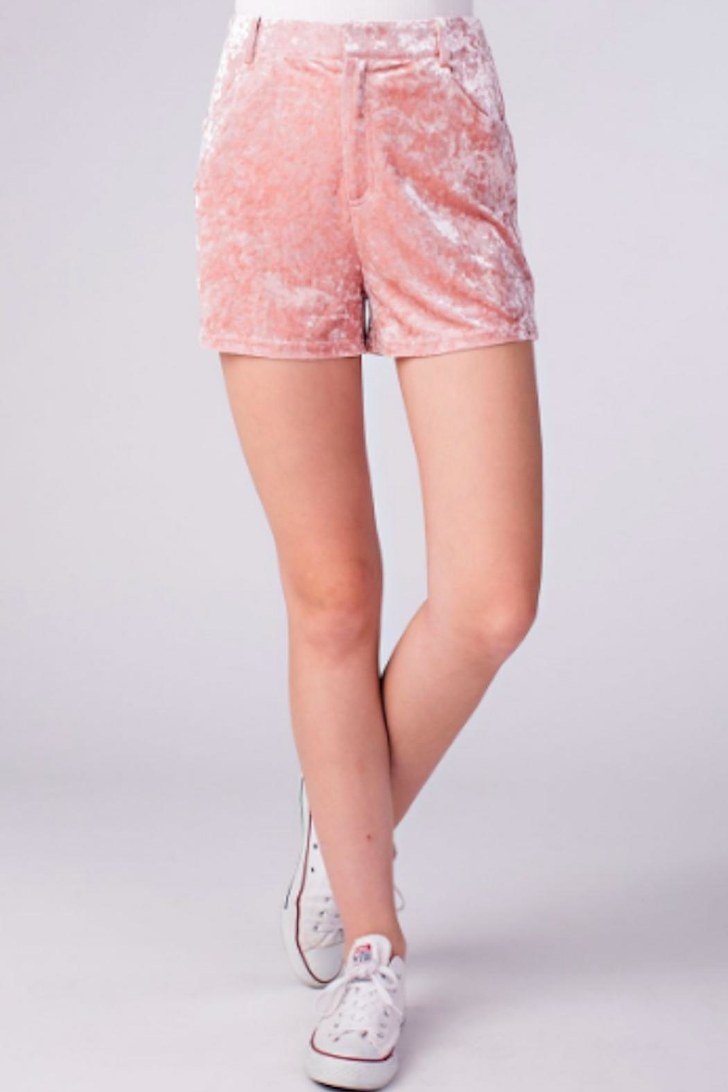 TIMELESS Crushed Velvet Shorts - Front Cropped Image