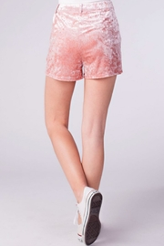 TIMELESS Crushed Velvet Shorts - Other
