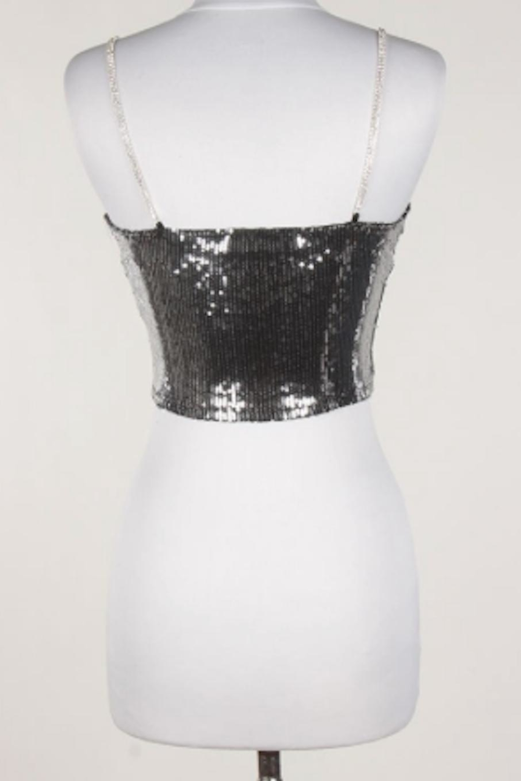 TIMELESS Disco Crop Top - Front Full Image