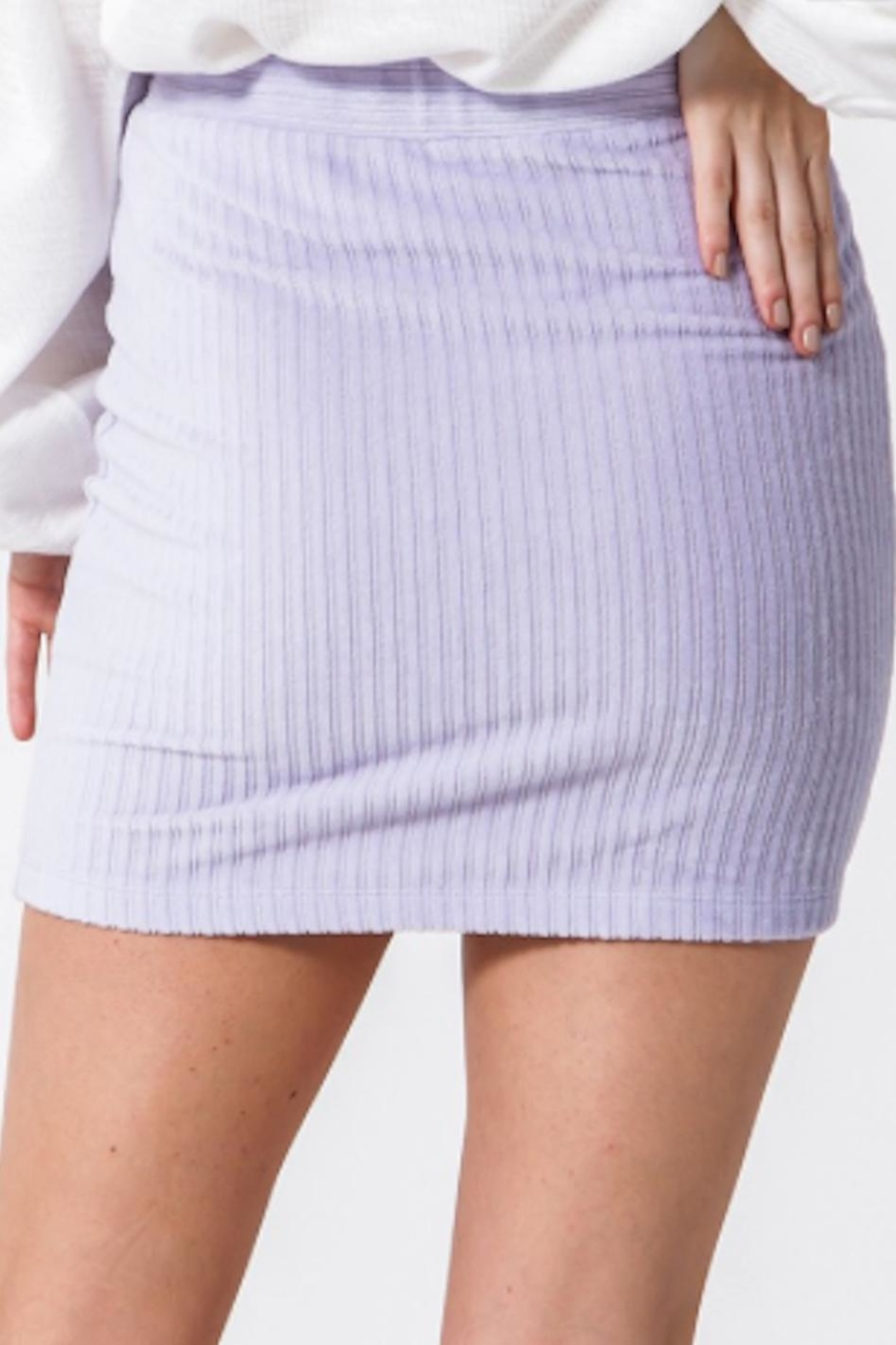 TIMELESS Lilac Skirt - Front Full Image
