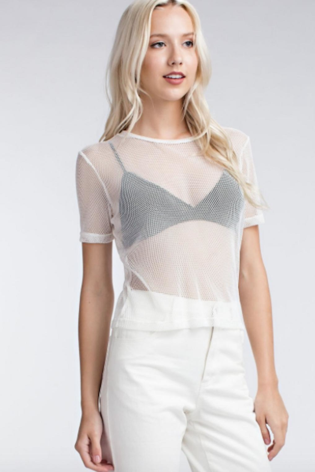 TIMELESS Net Top - Front Cropped Image