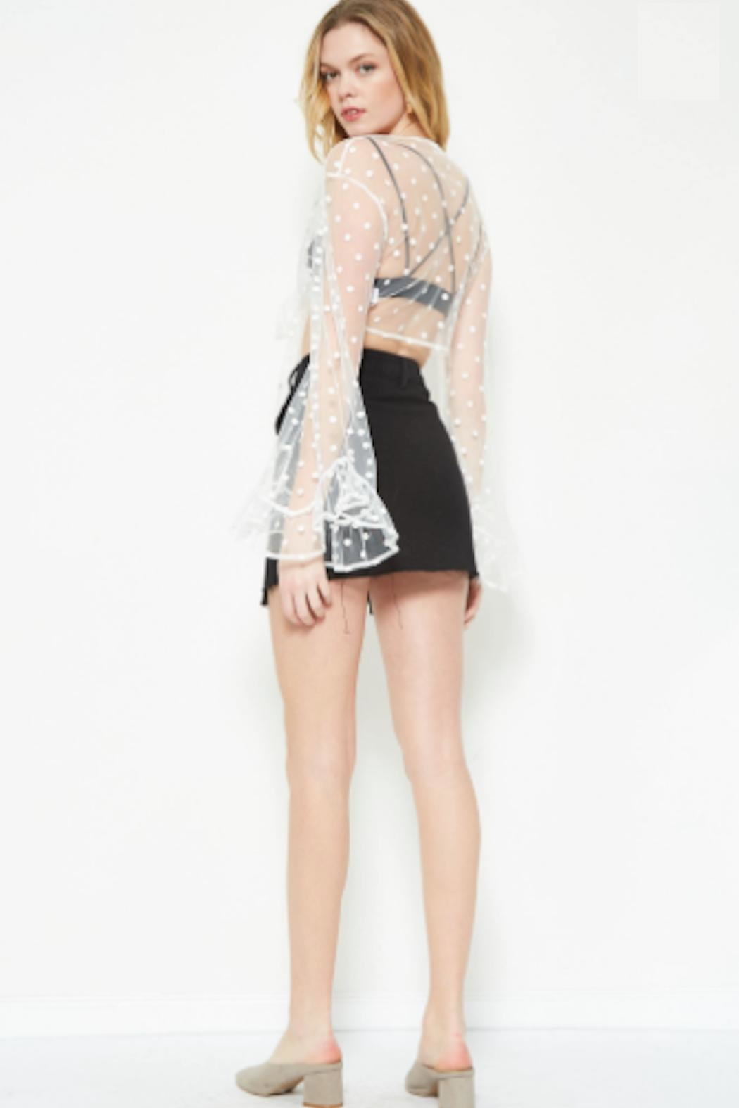 TIMELESS Sheer Tie Blouse - Back Cropped Image
