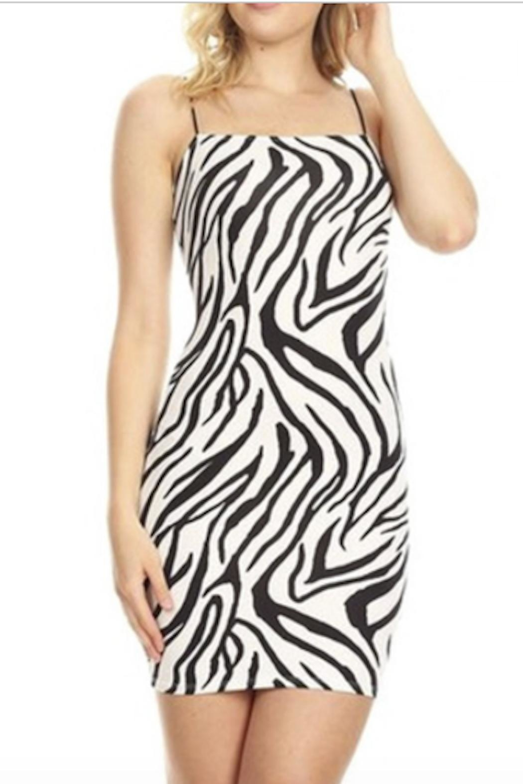 TIMELESS Zeze Wild Dress - Front Cropped Image