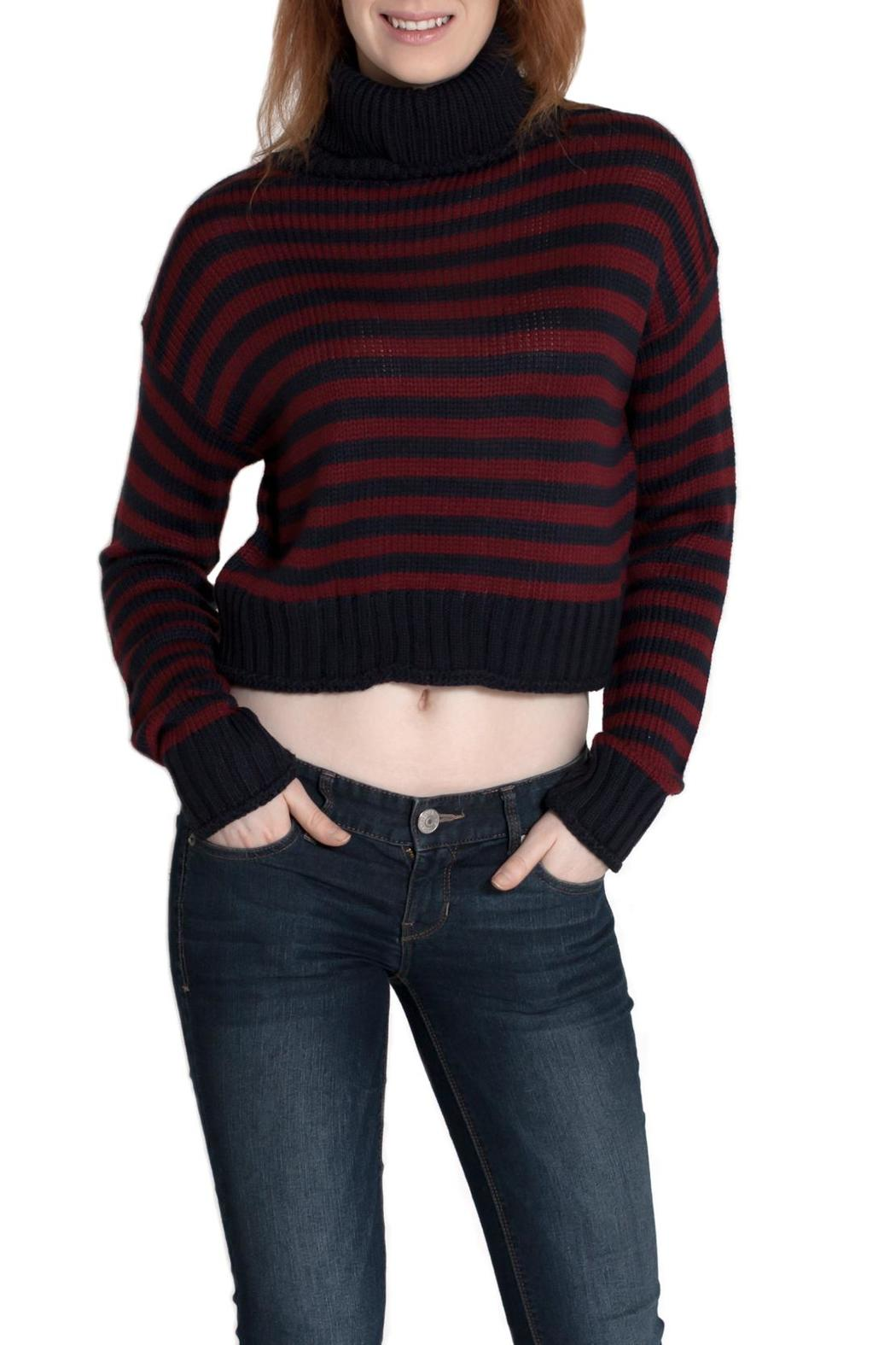Timing Cropped Turtleneck Sweater - Front Cropped Image