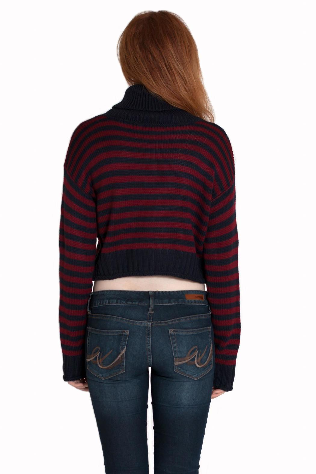 Timing Cropped Turtleneck Sweater - Back Cropped Image