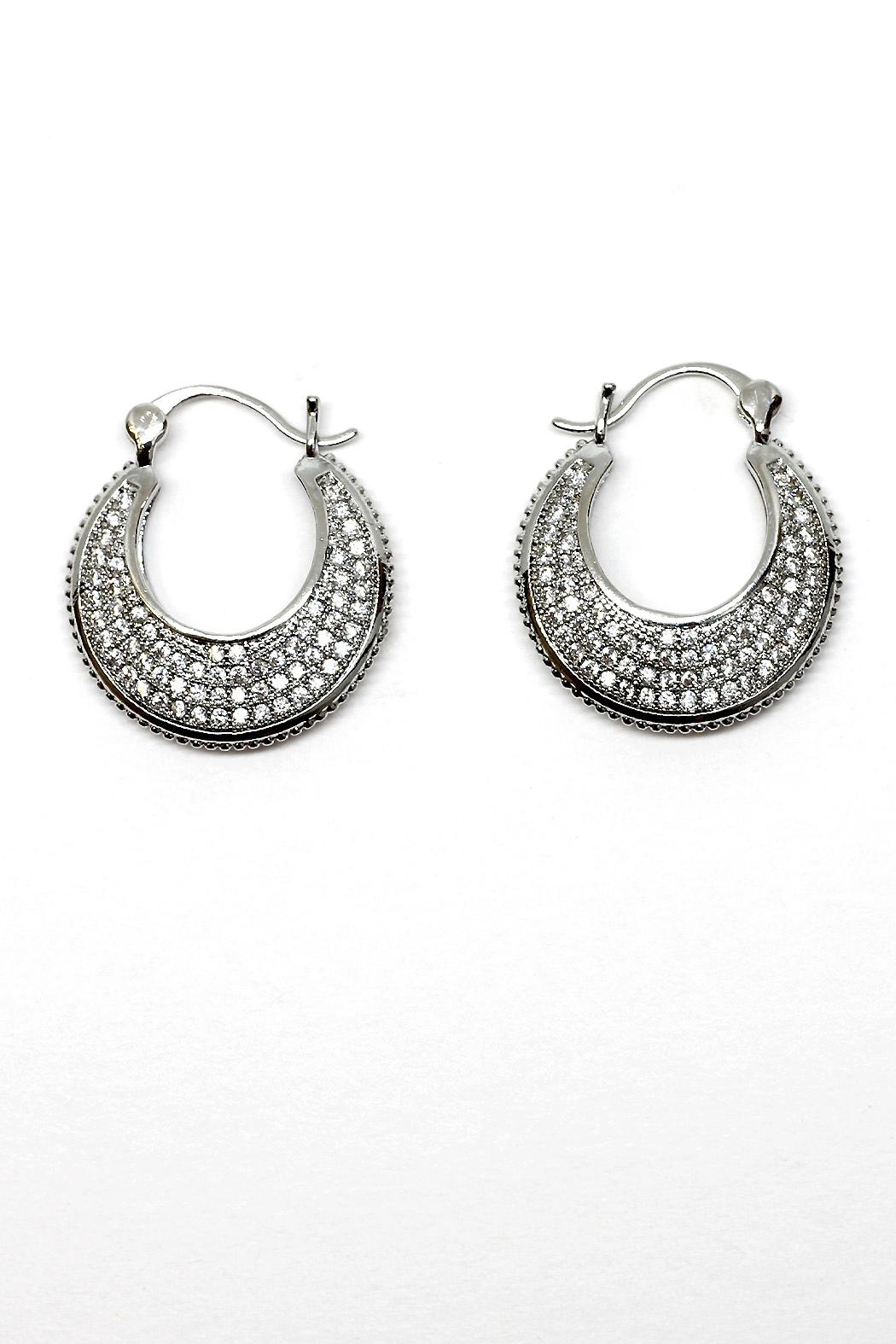 TINK TINK Circular Hoops Earrings - Front Cropped Image