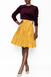 Tintoretto Silk Skirt - Side cropped