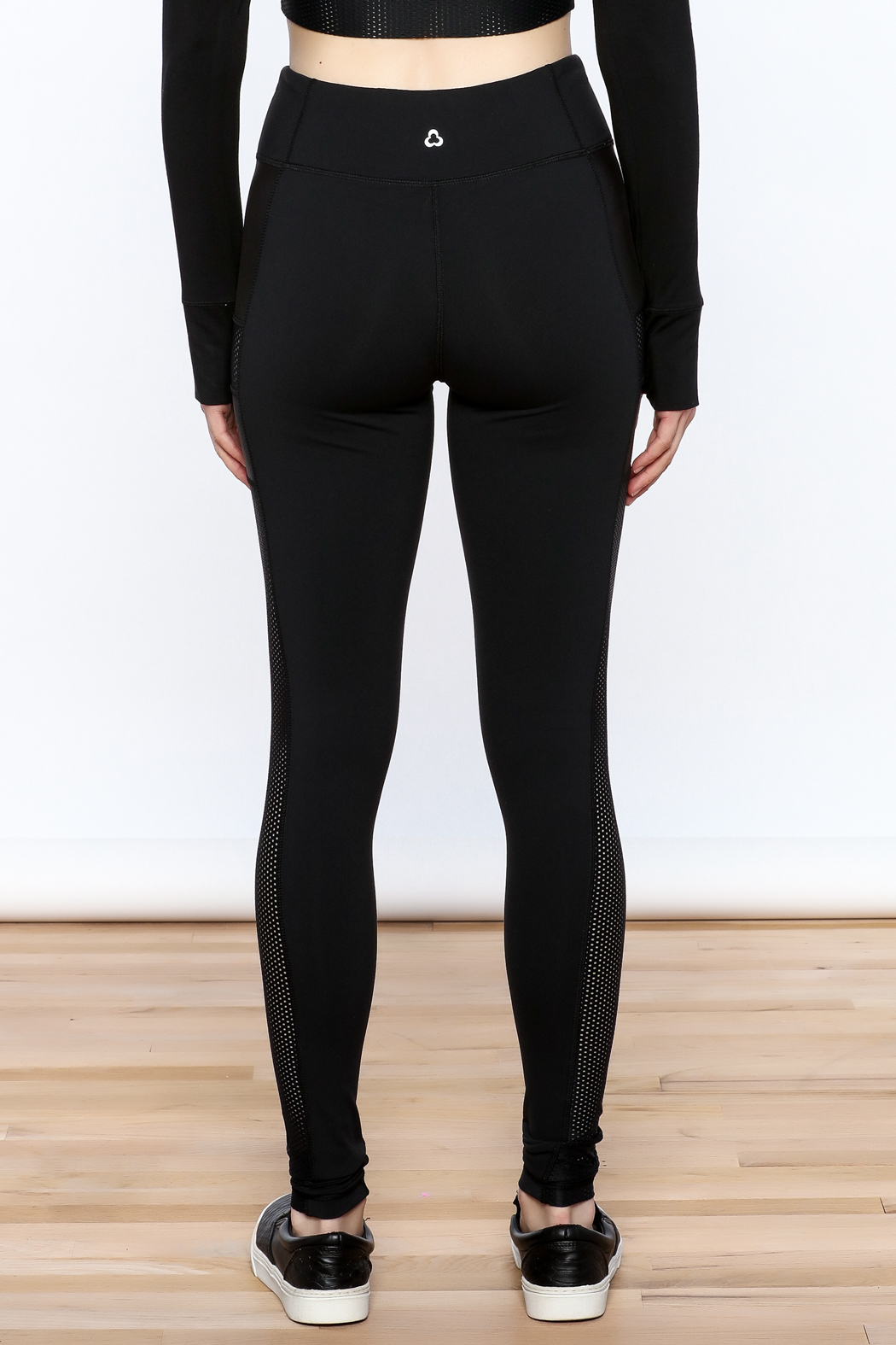 Titika Active Couture Dipsi Mesh Leggings - Back Cropped Image