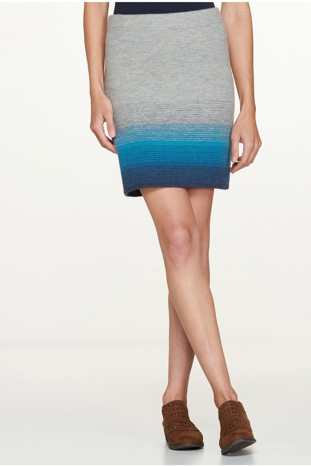 Toad & Co. Merino Wool Skirt - Main Image