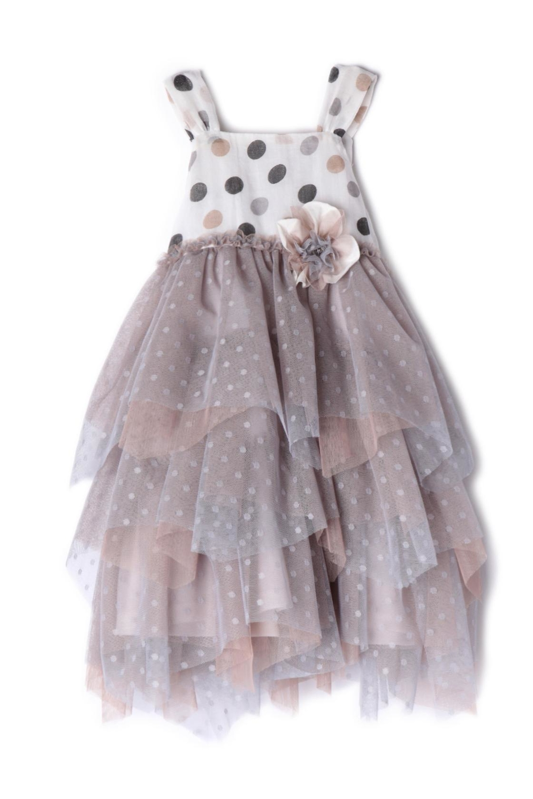 Isobella and Chloe Toffee-Spots Net Dress - Main Image